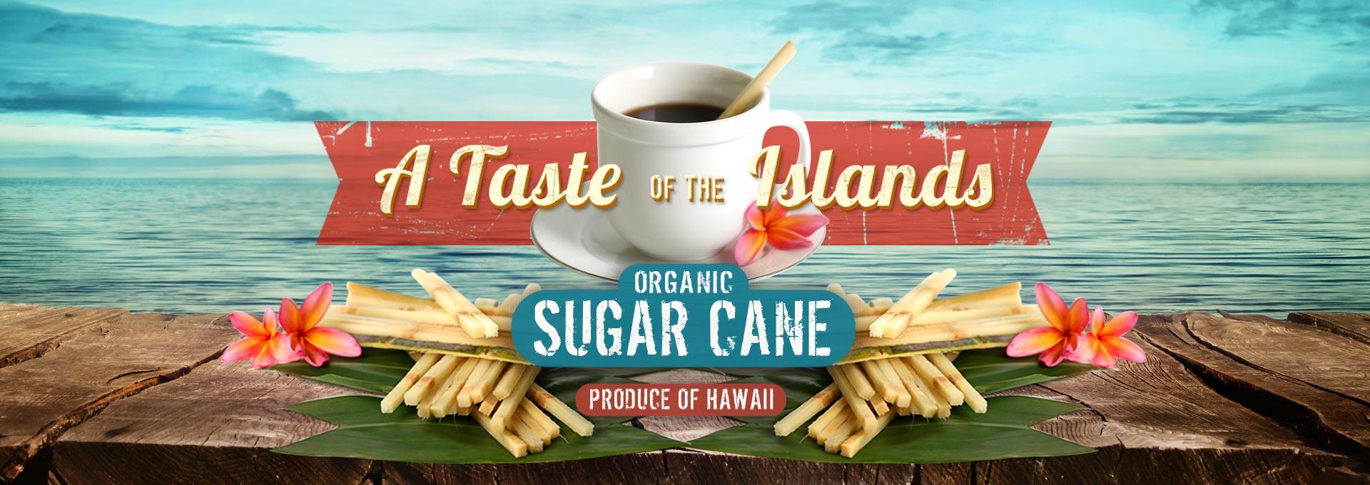 Coffee Stirrers - Sugar Cane Sticks